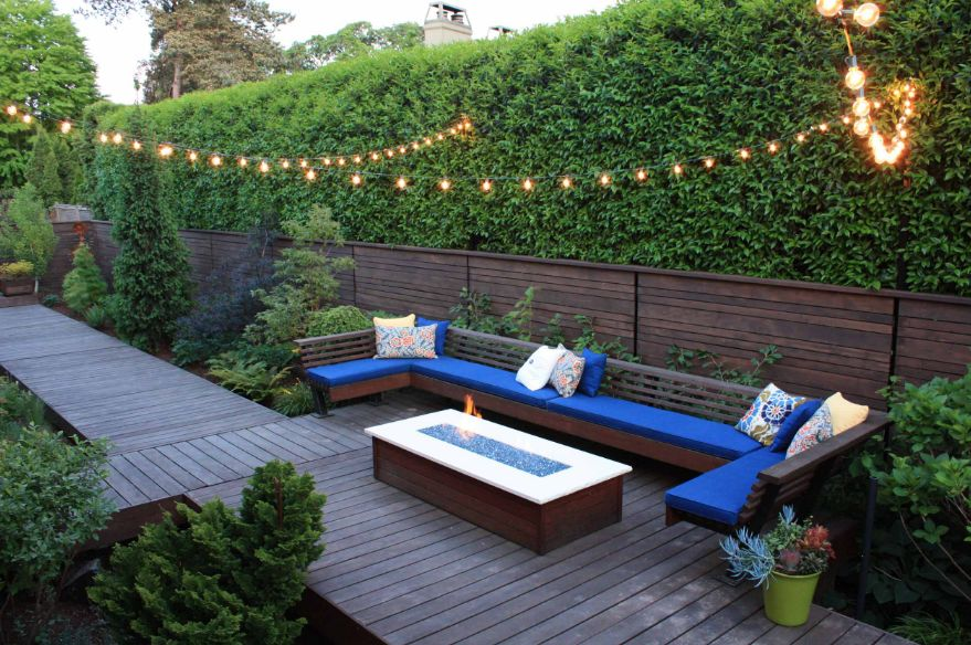 hedge wall_source-homedit.com.jpet